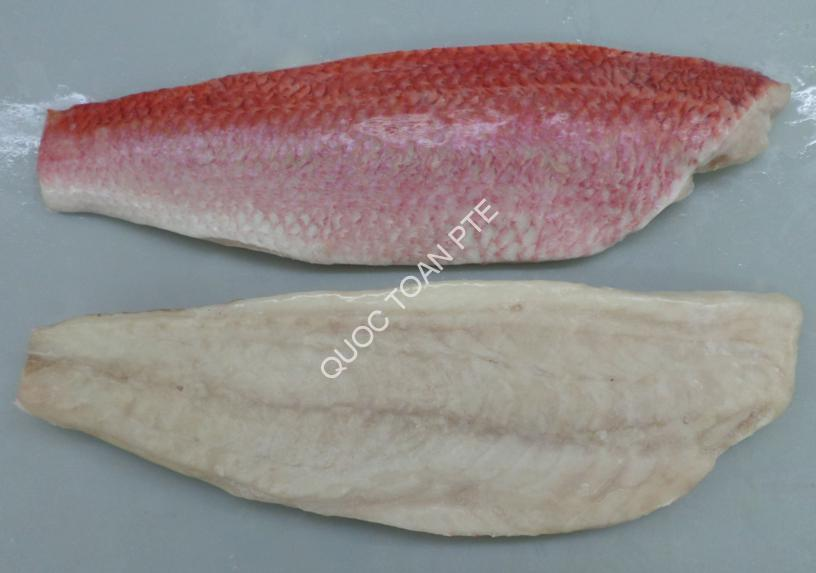 QUEEN-SNAPPER-FILLET-SKIN-ON-BONELESS