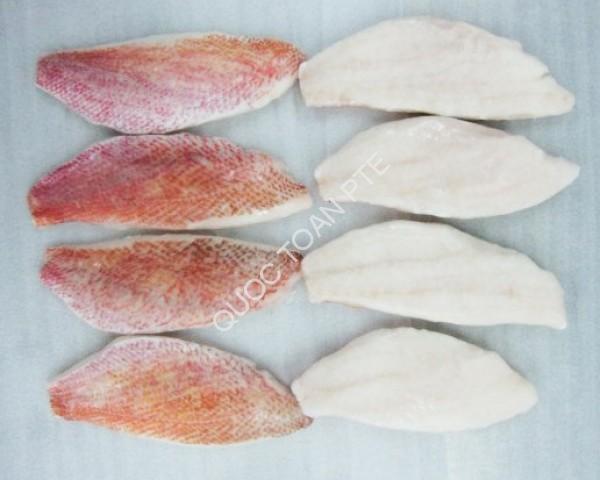 red-snapper-lutjanus-sanguineus